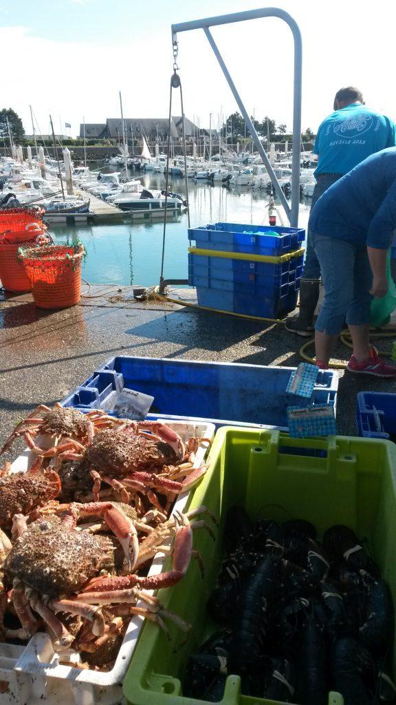 le clos giot gîte rural normandie cotentin saint vaast la hougue débarquement pêche poission port de saint vaast